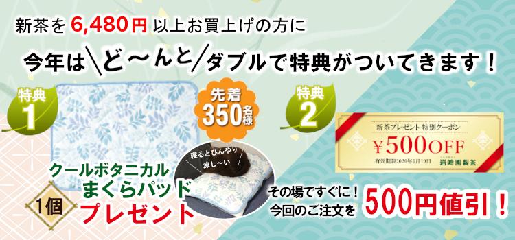 新茶pプレゼント詳細2020