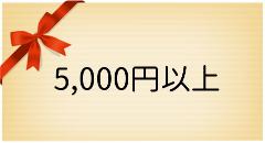 ギフト5000円以上