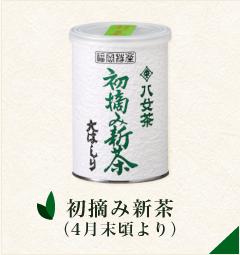 初摘み新茶(4月末頃より)